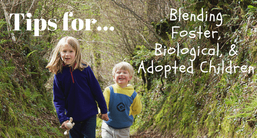 Tips for blending foster and biological/adopted children