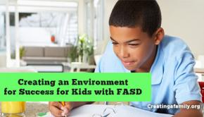 Creating an environment where our foster and adopted kids with FASD can succeed.